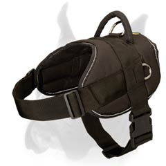 Amazing all-weather Dog Harness