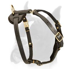 Multipurpose Boxer Dog Harness