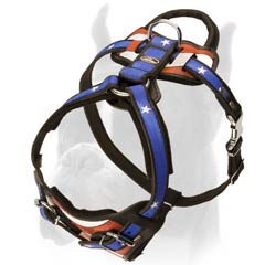 Dog Harness with Be-in-control handle