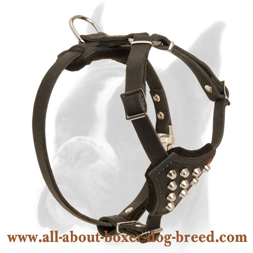 Universal Boxer leather Dog Harness