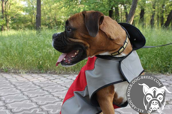 Boxer nylon harness of any weather material with Velcro for walking