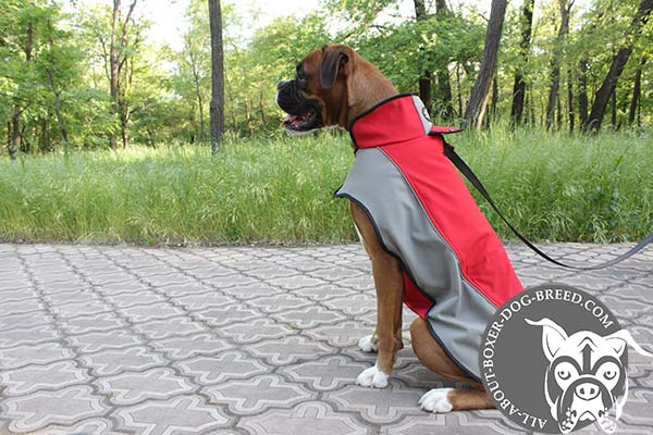 Boxer nylon harness of lightweight material with stand-up collar for any weather walks