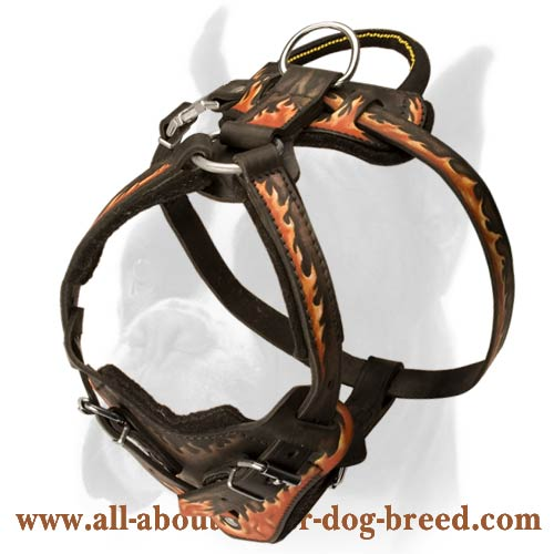 handcrafted leather harness for boxer breed with unique fire painting h1fl 1035 red flames. Black Bedroom Furniture Sets. Home Design Ideas