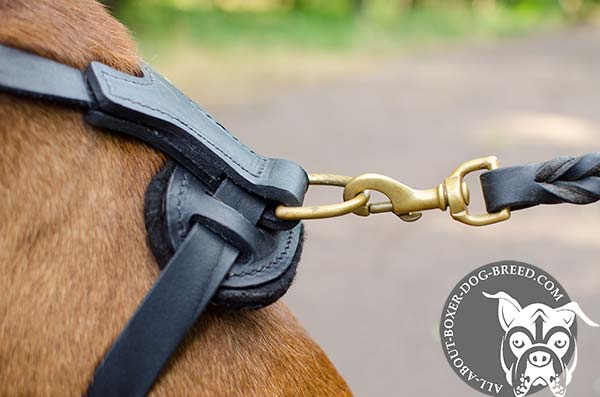 Comfortable Boxer Collar with D-Ring