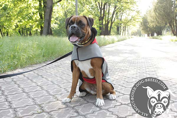 Boxer Winter Coat with Reliable Velcro