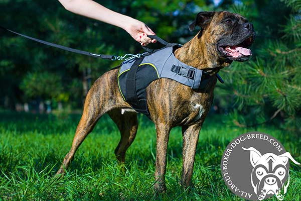Ultra Light Strong Nylon Boxer Harness