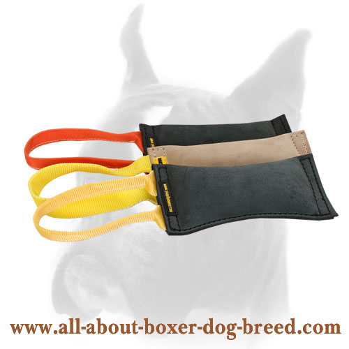 Leather Dog Bite Tug for Training with Puppy