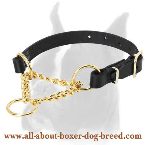 Smart Control Martingale Boxer Collar