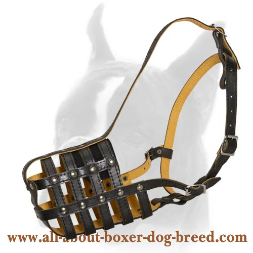 Top Notch Basket-like Leather Muzzle for Boxer Dog