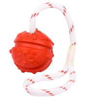 Everlasting Fun Ball on a Rope for Boxer - 2 3/4 inches (7 cm)
