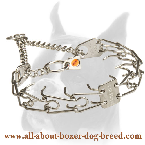 Boxer HS Stainless Steel Pinch Collar for Obedience Training 1/8 inch (3.25 mm)