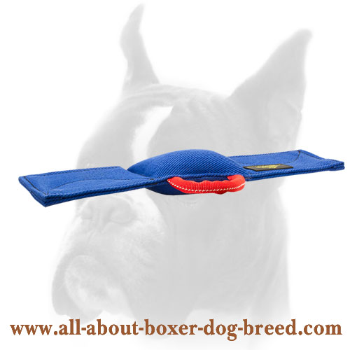 Professional Training Boxer Bite Pad