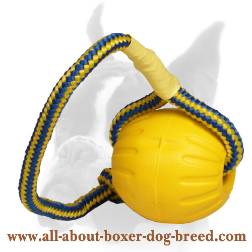 Go get it Foam Ball for Boxer Training and Playing - Medium Size 3 inch (7,5 cm)