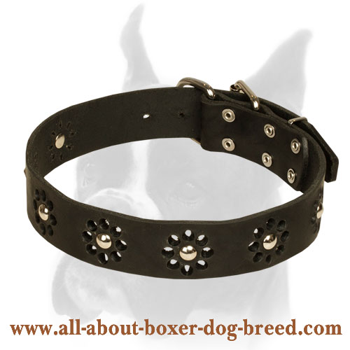 Stylish Collar with Camomile Ornament for Boxer