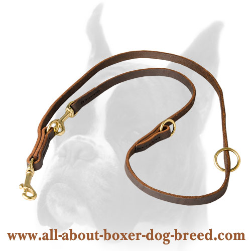Multifunctional Boxer leash for different activities