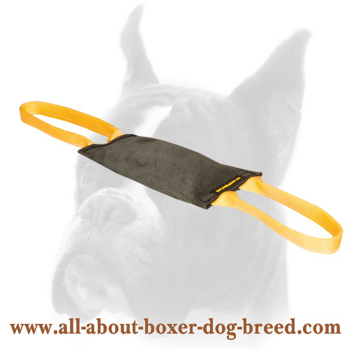 Firm Bite Leather Tug for Boxer Training