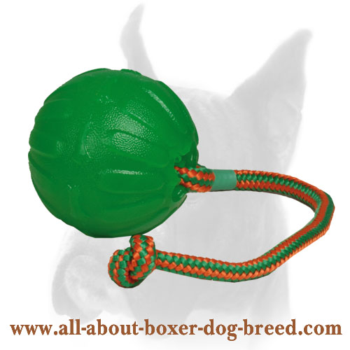 Roll and Throw Chew Boxer Ball - 3.5 inch (9 cm)