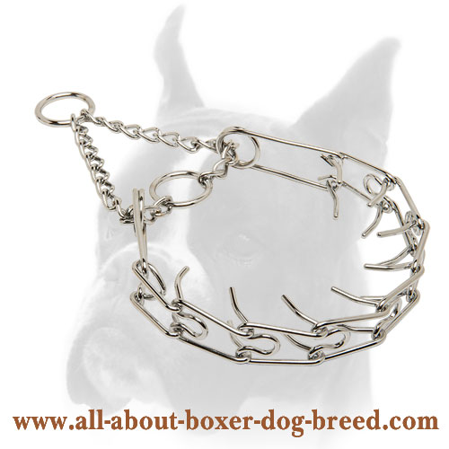 Boxer Chrome Plated Pinch Dog Collar - 1/10 inch (2.3 mm) prong's diameter