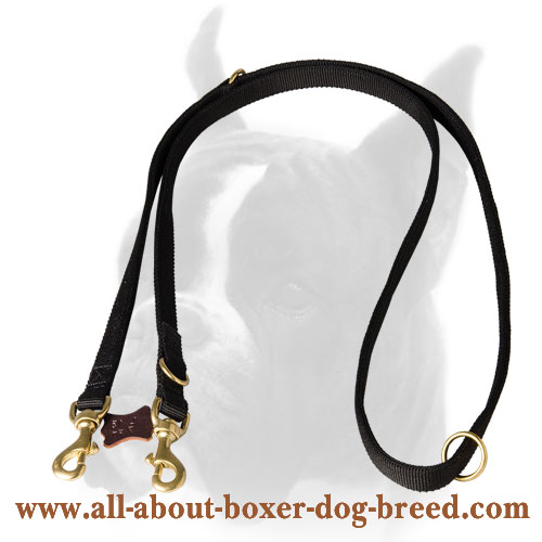 Extra strong nylon Boxer leash