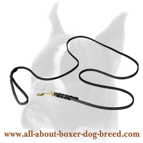 Extremely long Boxer Leather Leash with Brass Snap Hook
