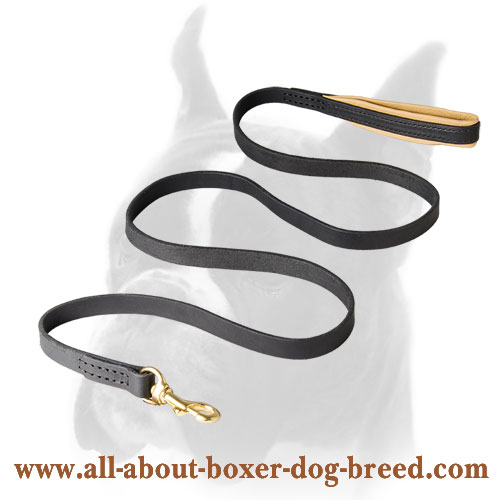 Long-servicing leather Boxer leash for walking and training