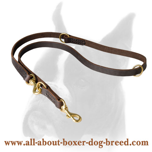 Brass Snap Hooks and O-rings for Boxer Leash