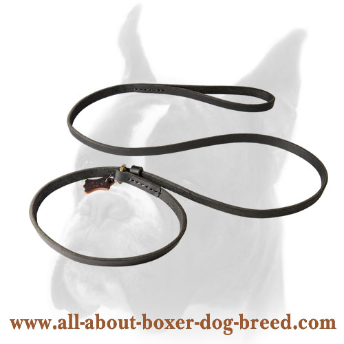 Boxer Leather Leash 2 in 1