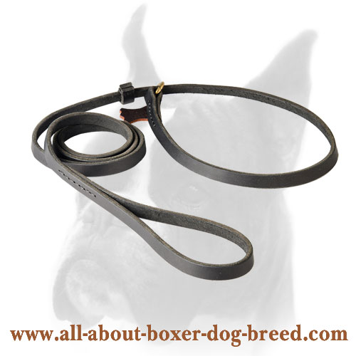Boxer Slip Leash with O-ring
