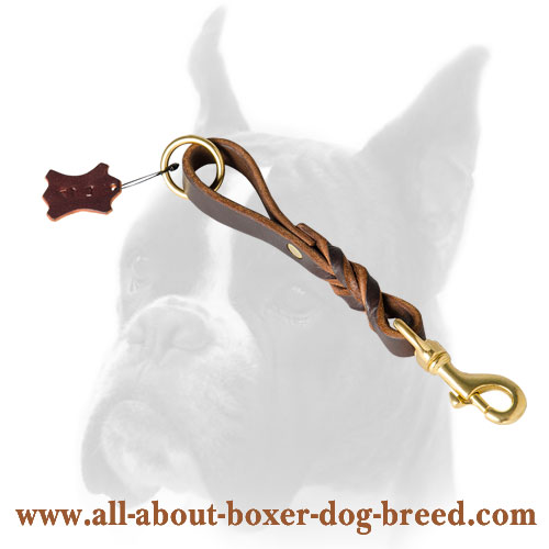 Leather leash with O ring for Boxer