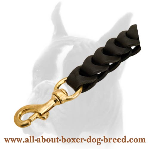 Extra Durable Leather Dog Leash with Brass Snap-hook