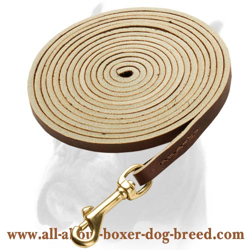 Durable Leather Dog Leash with convenient Snap-hook