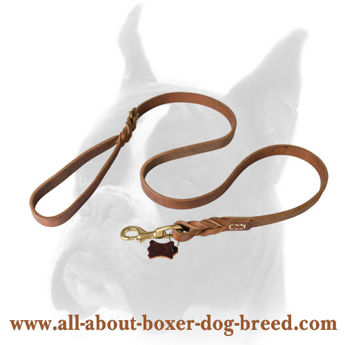 Long Servicing Braided Leather Dog Leash