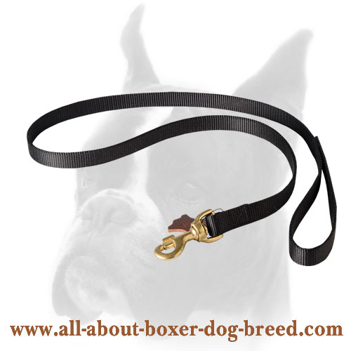 Nylon Boxer leash for walking and training