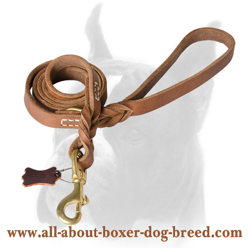 Leather Boxer leash for training