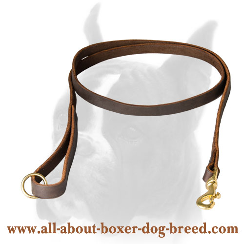 Functional Boxer leash of genuine leather