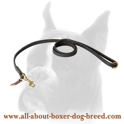 Strong leather Boxer leash for walking