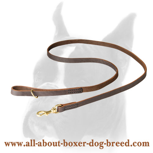 Comfortable Boxer Leather Leash with brass snap hook