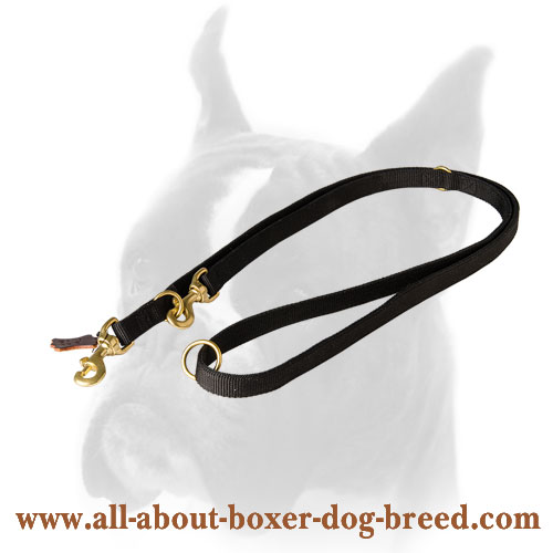 Nylon Boxer leash for tracking