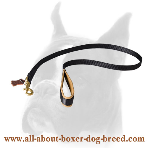 Dependable nylon leash with comfy handle