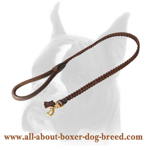 Dependable leather leash for Boxer