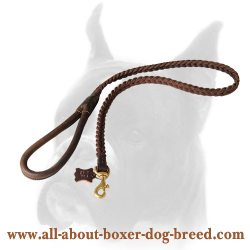 Leather Boxer leash for tracking