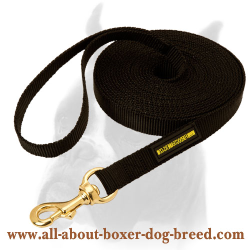 Dependable nylon leash for different kinds of training
