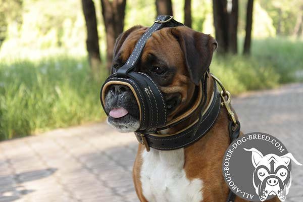 Leather Boxer Muzzle with Open Ended Construction