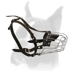 Wire Cage Muzzle for Boxer with Spacious Cage