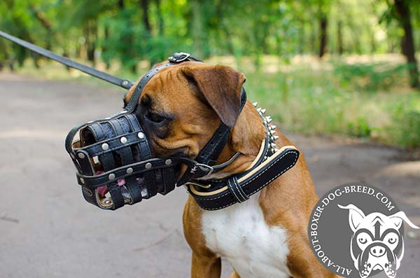 Leather Basket Boxer Muzzle with Excellent Breathability