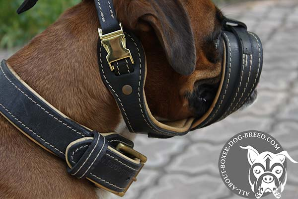 Boxer leather muzzle with durable brass plated hardware for professional use