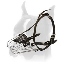 Great Boxer Wire Cage Muzzle for Long Walking