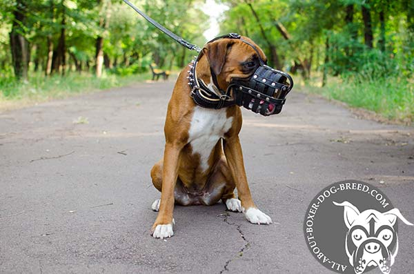 High Quality Leather Boxer Muzzle