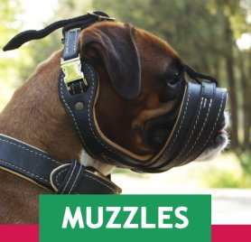 Top Banner Rd Muzzles